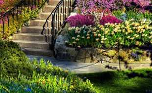 Güney Botanik Peyzaj ve Bahçe Düzenlemesi